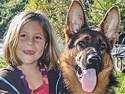 German shepherd breeder in tampa florida